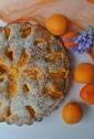 torta albicocche e cocco